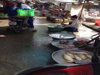 Nhiều công trình xử lý nước thải ở các khu chợ chưa phát huy hiệu quả