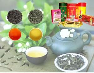 sản phẩm trà của tôn vinh