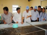 Nhiệt điện Vĩnh Tân I xin nhấn chìm 1,6 triệu m3 vật liệu thải xuống biển: Hiệp hội tôm Bình Thuận k