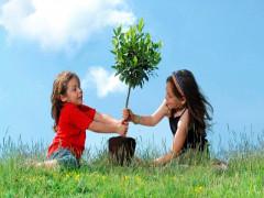 10 hành động của bạn góp phần bảo vệ môi trường