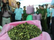 Hải Phòng: Phát hiện hàng tấn lá khát và shisha