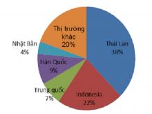 Nhập khẩu ô tô nguyên chiếc - xe Thái ùn ùn đổ về Việt Nam