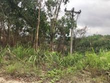 Quảng Ninh: Thu hồi, chấm dứt hoạt động đầu tư 3 dự án trên địa bàn TP. Hạ Long