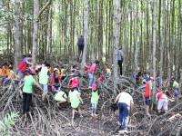 Du lịch Việt tổ chức trại hè thiếu nhi miễn phí