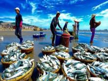 Cường quốc chế biến thủy sản nhưng quảng bá vẫn 'chưa thấm vào đâu'
