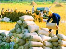Nông nghiệp Việt Nam hướng đến mục tiêu xuất khẩu 40 tỷ USD năm 2018