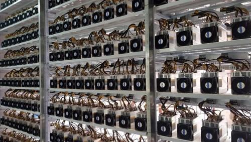 Bộ tài chính đề xuất tạm dừng nhập máy đào tiền ảo