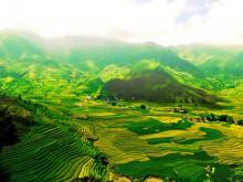 Hơn 8.600 doanh nghiệp đổ vốn vào lĩnh vực nông nghiệp