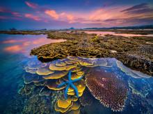 """""""Sắc màu của biển"""" giành giải Nhất cuộc thi ảnh nghệ thuật du lịch toàn quốc"""