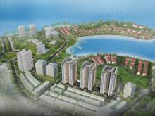 New Life Tower hưởng lợi từ sự phát triển của thị trường bất động sản Hạ Long