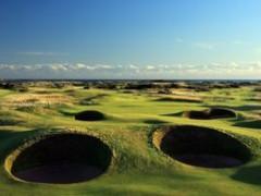 5 kiểu đánh golfer phải thuần thục để chinh phục sân golf dạng links