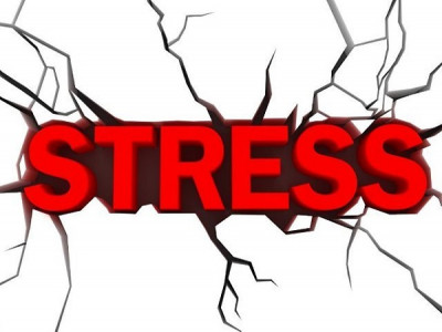 Kiểm soát stress để làm việc hiệu quả