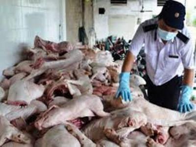 Phát hiện hàng chục tấn thực phẩm tươi sống và đông lạnh không rõ nguồn gốc