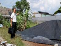 Cần làm rõ việc bán đấu giá tài sản của Chi cục THA Dân sự huyện Củ Chi