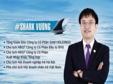 Kinh doanh thua lỗ, Shark Vương