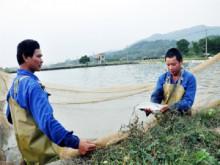 Quảng Ninh: Nhức nhối tình trạng nợ lương, BHXH
