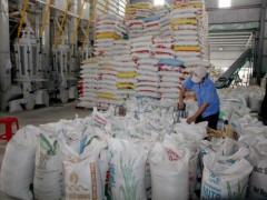 Kinh doanh xuất khẩu gạo cần những điều kiện gì?