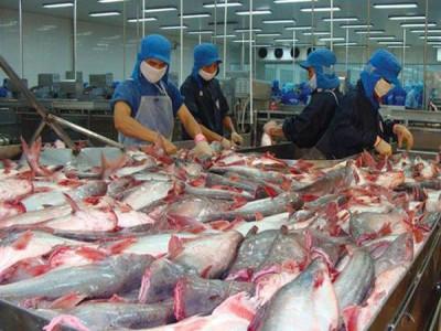 Doanh nghiệp trong ngành thủy sản đầu tư ERP được hưởng lợi gì