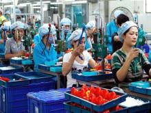 Doanh nghiệp Việt ngày càng teo tóp