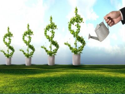 Ai sẽ là người đầu tư cho dự án khởi nghiệp của bạn và tại sao?