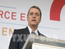 WTO: Chiến tranh thương mại toàn cầu đe dọa hàng triệu việc làm