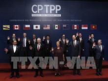 CPTPP sẽ có hiệu lực vào cuối năm 2018