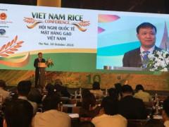 Chiến tranh thương mại Mỹ - Trung: Doanh nghiệp xuất khẩu gạo không chủ quan