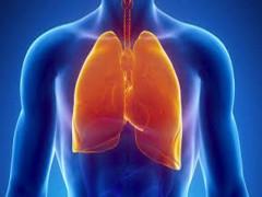 5 thói quen giúp phổi luôn khỏe mạnh mỗi ngày