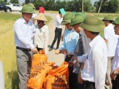 Xây dựng nông thôn mới ở huyện Quảng Ninh (Quảng Bình):Thành công khi ý đảng với lòng dân là một