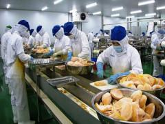 Xuất khẩu nông sản: Bài toán gia tăng giá trị