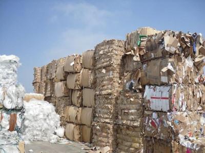 Quản lý nhập khẩu phế liệu sản xuất giấy: Doanh nghiệp lên tiếng