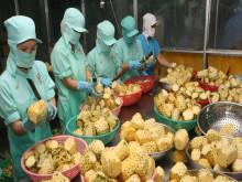 Xuất khẩu ngành nông nghiệp đạt gần 33 tỷ USD