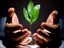 Quỹ đầu tư mạo hiểm nhìn từ các nền kinh tế lớn