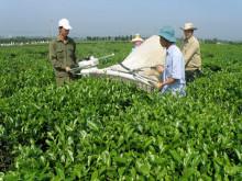Vào CPTPP: Cơ hội lớn phát triển nền nông nghiệp thông minh