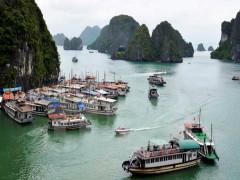 Chi hội tàu Du lịch Hạ Long kiến nghị xin tạm hoãn đánh giá, phân loại chất lượng tàu du lịch