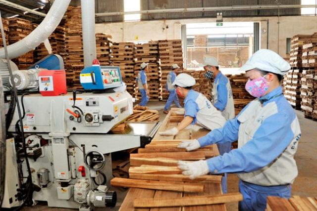 """Doanh nghiệp gỗ trước thách thức """"gỗ sạch"""""""