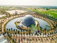 Đầu tư sản xuất nông sản sạch tại Việt Nam: Mỏ vàng hay… hang hổ?