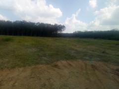 """Khu dân cư Chánh Phú Hòa (Bình Dương): Điểm mặt 2 công ty qua mặt pháp luật, bán đất """"vẽ"""" trục lợi"""