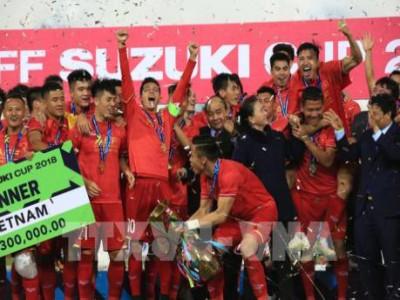 Giành chức vô địch, Đội tuyển Việt Nam nhận