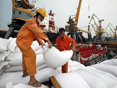 Xuất khẩu gạo: Tín hiệu vui từ nhiều thị trường