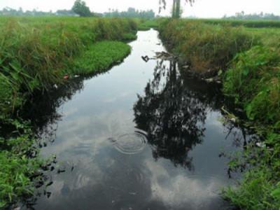 Dự án cải thiện môi trường làng nghề Tràng Minh – Hải Phòng: Sau 4 năm thực hiện vẫn dang dở