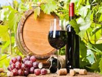 7 đồ uống có cồn nhưng lại tốt cho sức khỏe, nên uống hằng ngày