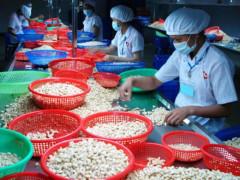 Làm thế nào để cải thiện môi trường đầu tư ở Việt Nam?