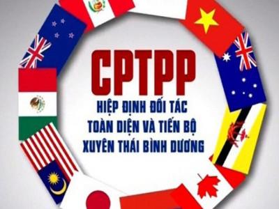 Hiệp định CPTPP: Cơ hội cải cách thể chế, tạo việc làm và nâng cao thu nhập