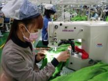 Vai trò của lao động nữ đối với tăng trưởng kinh tế toàn cầu (Phần 1)