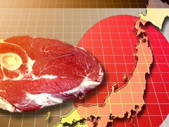 Bài học về chính sách thương mại của thị trường thịt bò Nhật Bản
