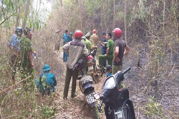 Đắk Lắk: Cháy rừng trồng ở huyện Krong Pắc