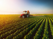 Doanh nhân hiến kế giải pháp tạo doanh nghiệp dẫn dắt thị trường nông nghiệp