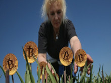 Bitcoin là hội chứng hoa tulip nở rộ rồi tàn lụi nhanh chóng hay giống như internet đời đầu