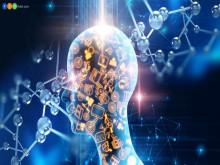 Ai đang dạy cho trí tuệ nhân tạo?